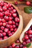 Fresh red cranberry — Stock Photo