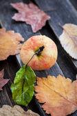 Apple on wooden table — Stock Photo
