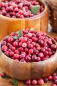 čerstvé červené brusinky — Stock fotografie