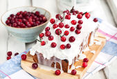 Delicious homemade cranberry loaf cake — Stock Photo