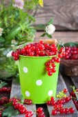 Fresh redcurrant in a bucket — Stock Photo