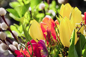 Outdoor easter bouquet of flowers with tulips and  pussy willows — Stock Photo