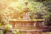 Magical old fountain overgrown with moss and sunbeams — Stock Photo
