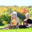 Young Children Having Fruit Picnic at Apple Orchard — Stock Photo #54764725