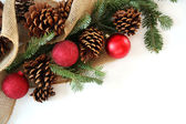 Christmas Bulb, Pinecone and Evergreen Border Isolated on White  — Stockfoto
