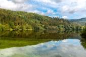 Reservoir Black Forest — Stockfoto