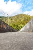Sperrfeuer-schwarzwald — Stockfoto