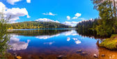 Windgfaellweiher Black Forest — Stockfoto