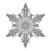 Hand-drawn doodles natural snowflake. Zentangle mandala style. — Stock Vector