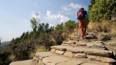 Hiking in Himalaya mountains — Stock Video