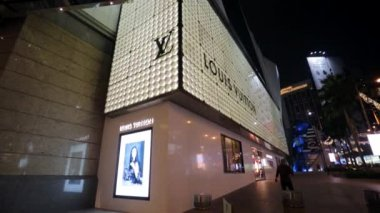 Louis Vuitton store — Vídeo Stock