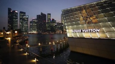 Building of Louis Vuitton store — Stock Video