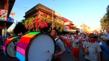 38-я годовщина фестиваль цветов чиангмая — Стоковое видео
