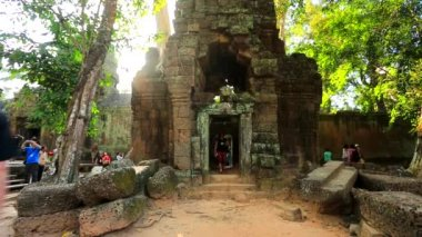 Tourists visit Ta Prohm Temple — Vídeo stock