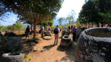 Tourists visit plain of Jars — Stock Video