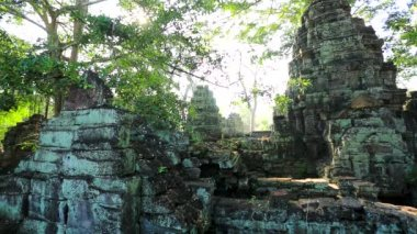 View of Ta Prohm Temple — Stock Video
