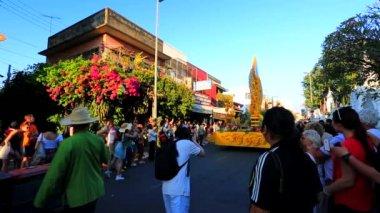 38th Anniversary Chiang Mai Flower Festival — 图库视频影像