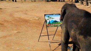 Elephant artist painting — Stock Video