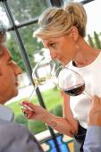 Tourism - Couple tasting wine in a Castle — Stock Photo