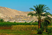 Egypt, Nile Valley, Luxor area, Thebes — Stock Photo