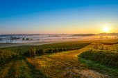 Castle in Bordeaux Vineyard Sunrise — Stock Photo