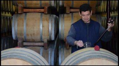 Winemaker Making Wine Test in Winery Cellar — Stock Video