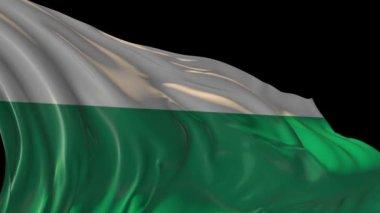 Flag of Bulgaria — Stock Video