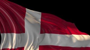 Flag of Denmark — Stock Video