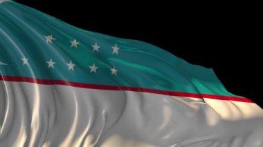 Flag of Uzbekistan — Stock Video