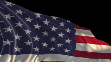 Flag of United States of America — Stock Video