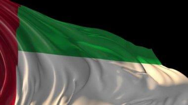 Flagge der Vereinigten Arabischen Emirate — Stockvideo