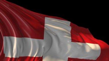 Flag of Switzerland — Stock Video