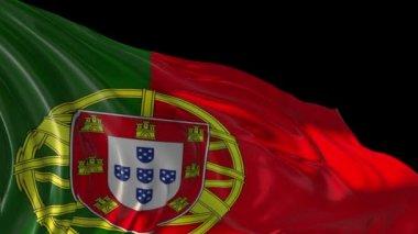 Portekiz bayrağı — Stok video