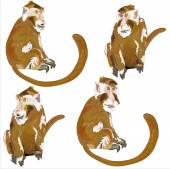 Image of monkey. — Stock Vector