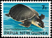 Cancelled postage stamp from papua new guinea — Stock Photo