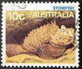 Sello australiano — Foto de Stock
