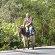 Old man riding a donkey on the street on Crete — Stock Photo #58146535