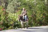 Old man riding a donkey on the street on Crete — Stock Photo