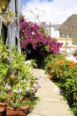 La Calera on La Gomera, Canary islands — Stock Photo