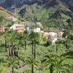 El Guro on La Gomera, Canary islands — Stock Photo #60126401