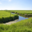 Creek on the Hallig Langeness in the Wadden Sea — Stock Photo #60135057