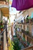 Flowers and plants and laundry on the balcony in the district Ravel in Barcelona — Stok fotoğraf
