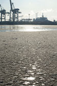 Ice floes on the river Elbe in Hamburg — Stock Photo