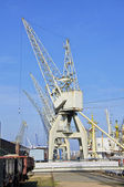 Old Harbor cranes in low-angle view in the port museum harbor Hamburg — Stock Photo