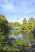 Autumnal City Park in Hamburg — Stock Photo