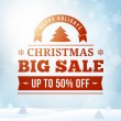 Christmas big sale poster background — Stock Vector #59420489