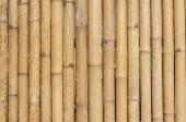 Bamboo fence background texture pattern — Zdjęcie stockowe