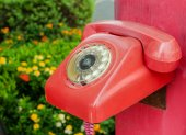 Old red phone vintage style on park — Foto Stock