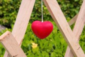 Red heart decoration hanging on wood — Stock Photo