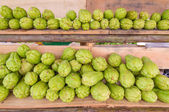 Bitter gourd or Chayote on wood in farms of agriculturist — Stock Photo